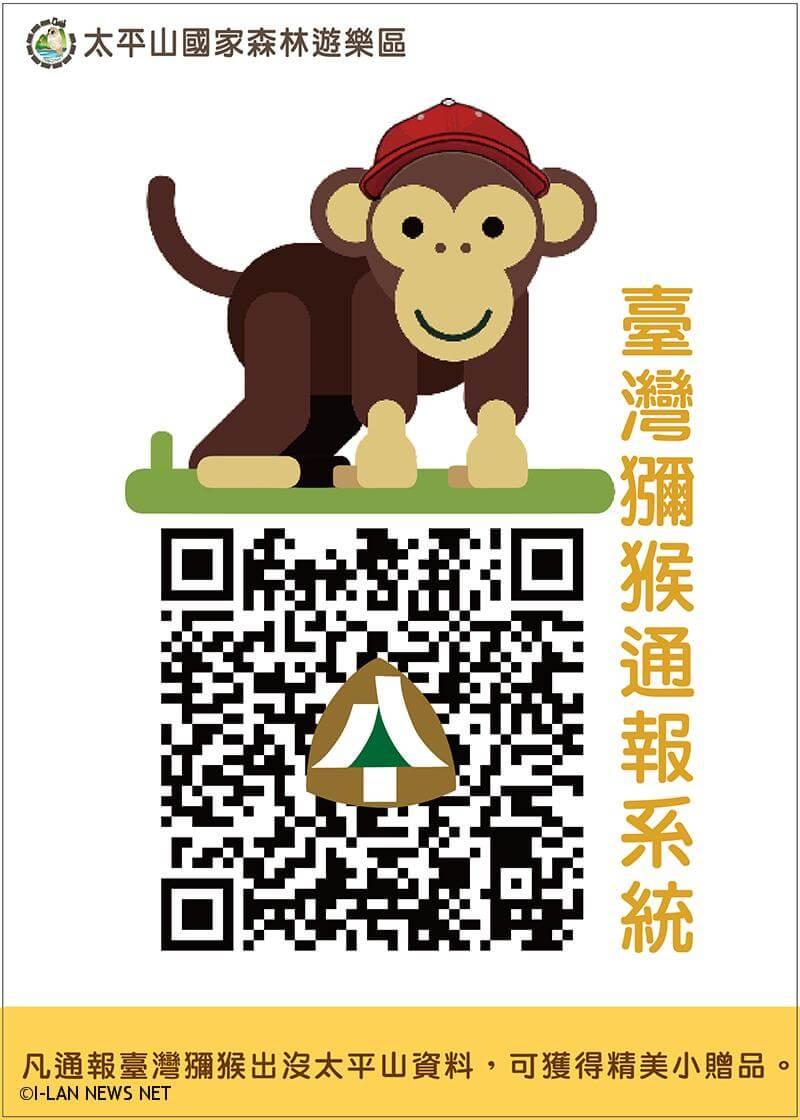 太平山國家森林遊樂區遊客發現臺灣獼猴通報系統APP,邀請遊客一同記錄獼猴蹤跡