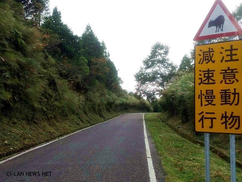 目前區內有宜專一線及翠峰林道二條道路,是許多入園遊客行駛車輛的主要動線。