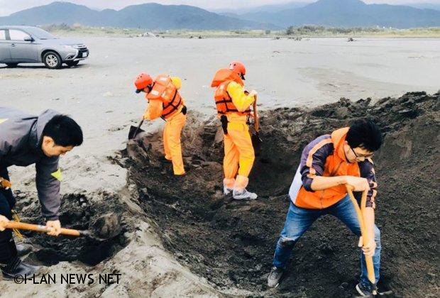 宜蘭新城溪發現柯氏喙鯨屍體解剖後就地掩埋