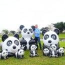 春節新亮點安農溪環保牧場100隻貓熊萌度破錶