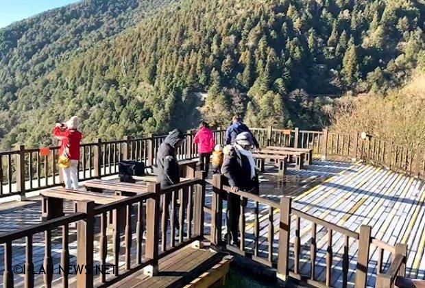 太平山國家森林遊樂區水氣不足見不到雪花飄飄場景