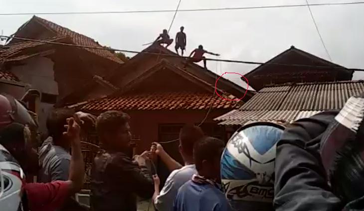 Babi di atap rumah warga di Cikalong.