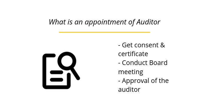 What is an appointment of Auditor