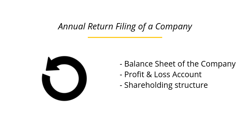 Annual Return Filing of a Company