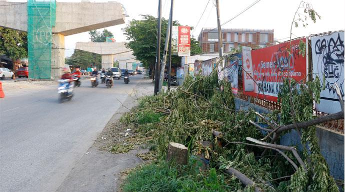 Pohon Ditebang di Tol BORR