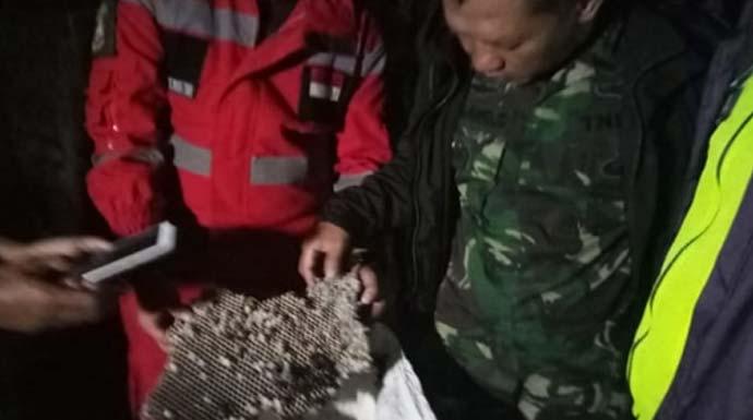 Sarang tawon vespa yang berada di Desa Tenjoayu, Cicurug, Sukabumi berhasil dievakuasi