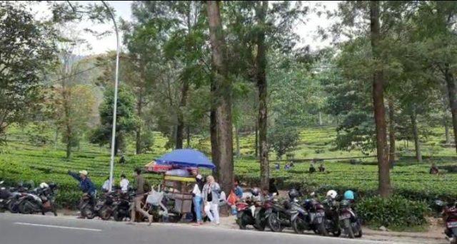 Parkir liar di kawasan puncak Bogor