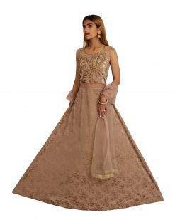 Embroidered Velvet Stitched Flared/A-line Gown (Brown)