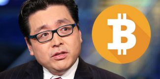 """Tom Lee: """"Bitcoin chính là lá chắn tốt nhất ngay lúc này"""""""