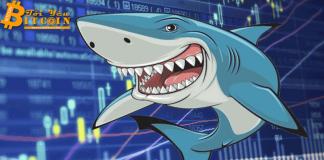 Liệu có bàn tay thao túng trong vụ sụp giá Bitcoin ngày 05/09 hay không?