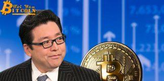 Tom Lee: Bitcoin sẽ đạt 20.000 USD trong năm nay