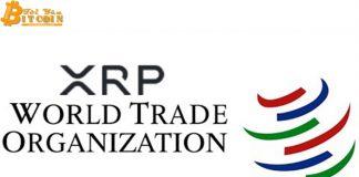 WTO: Ripple là bước đột phá cho hệ thống tài chính thế giới