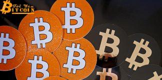 Nếu chia đều Bitcoin cho tất cả, mỗi người sẽ sở hữu bao nhiêu BTC?