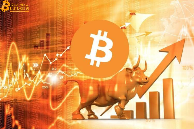 """Bitcoin """"pump"""" 13%, ghi nhận mức tăng trưởng 24 giờ mạnh"""
