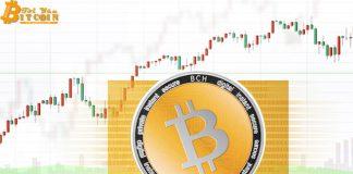 Giá Bitcoin Cash giảm 81% chỉ sau 1 tháng