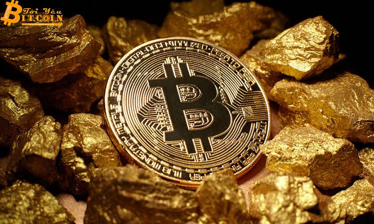 Hội đồng Vàng Thế giới (WGC): Bitcoin không giống Vàng