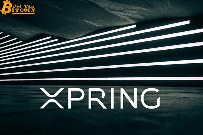 Xpring của Ripple lập quỹ 100 triệu USD để phát triển ngành công nghiệp game