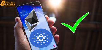 Samsung Galaxy S10 sẽ hỗ trợ ví Cardano (ADA)?