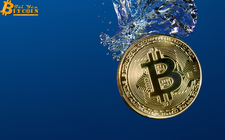 Bitcoin đã kết thúc giai đoạn lập đáy?