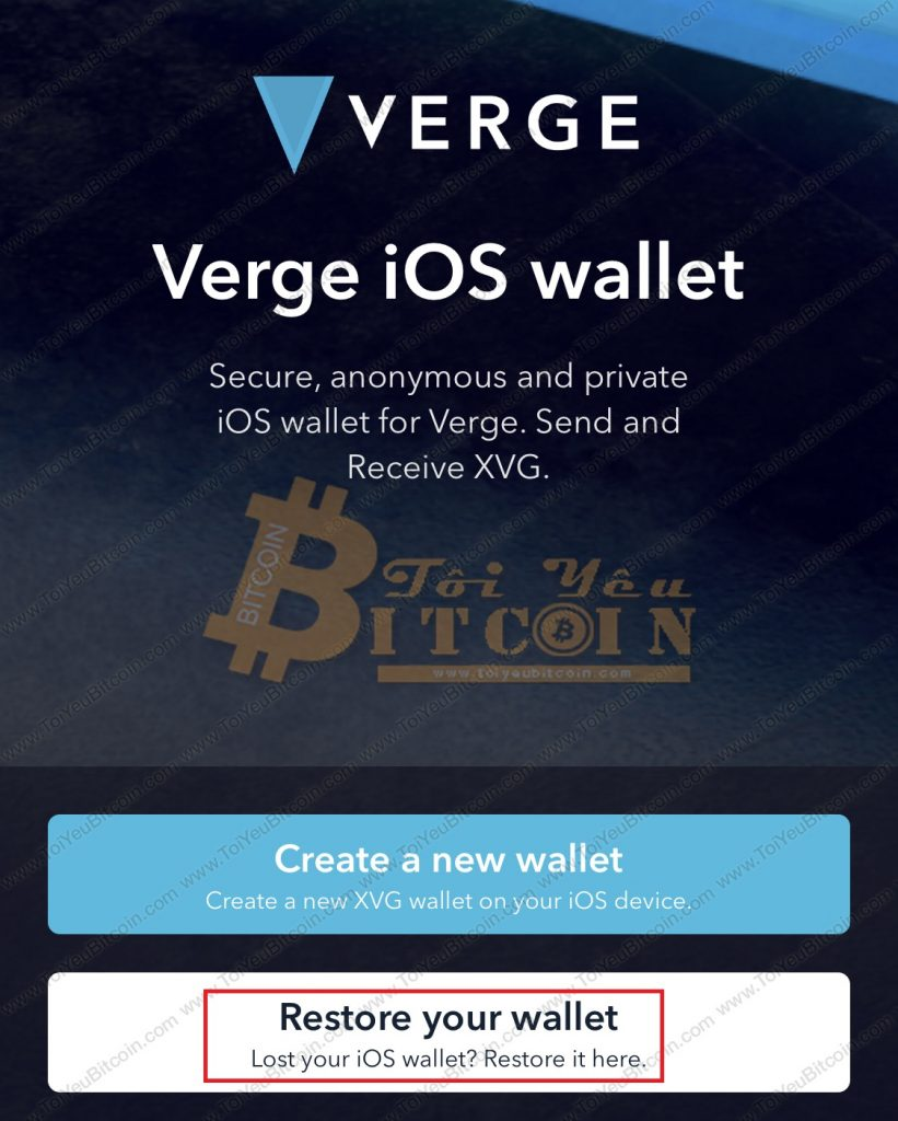 Cách khôi phục ví Verge Tor. Ảnh 1