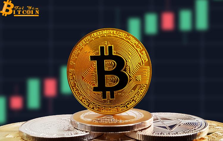 Weiss Ratings: Đợt bull run Bitcoin tiếp theo sẽ không thể vượt quá 20.000 USD