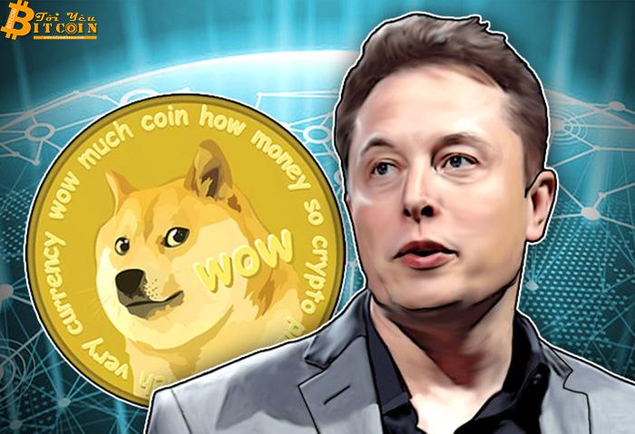 Elon Musk được bầu làm CEO Dogecoin