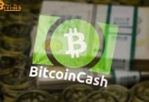 Hơn 50% số lệnh giao dịch Bitcoin Cash đến từ 1 địa chỉ duy nhất?