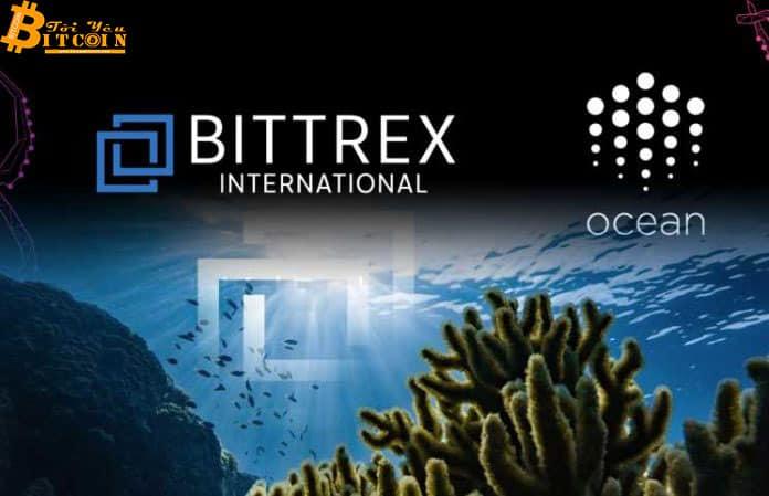 """Ocean Protocol - IEO """"xịt"""" của Bittrex, giá OCEAN giảm 80% ngay sau khi niêm yết"""