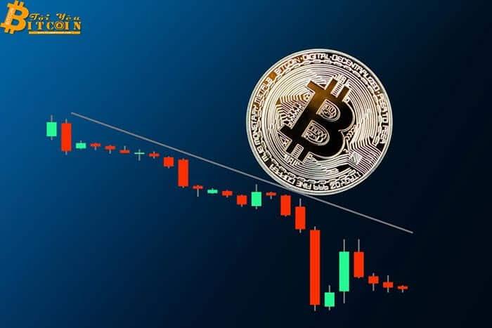 Giá Bitcoin giảm hơn 15% kéo theo toàn bộ thị trường sụt giảm mức hai chữ số