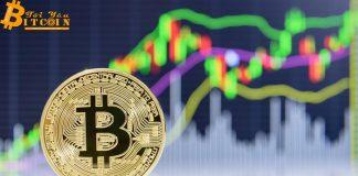 Hashrate Bitcoin đạt mức cao kỷ lục, giá tăng vượt $8,800