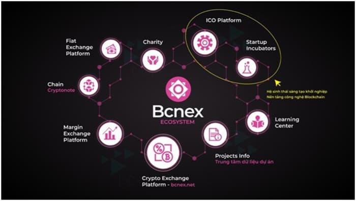 Hệ sinh thái của Bcnex
