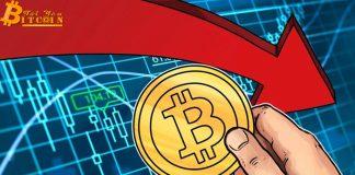 Giá Bitcoin ngập ngừng tăng vọt khi phe bul cố gắng giữ mức hỗ trợ $8.300