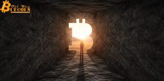 Cần bao nhiêu Bitcoin để nằm trở thành người giàu nhất trong số 1% holder BTC?