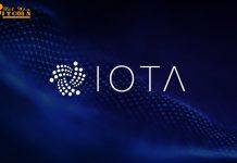 Ví Trinity bị hack, IOTA Foundation tạm ngừng node mạng để điều tra