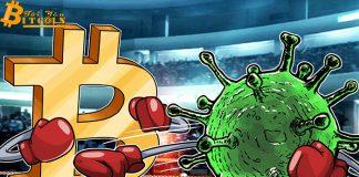 """Lượt tìm kiếm cho """"virus corona Bitcoin"""" vượt qua """"Bitcoin halving"""" trên Google"""