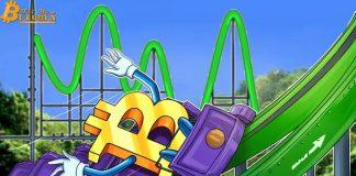 Giá Bitcoin tăng 15% trong một ngày để chạm mức đỉnh cao hơn gần $9.000