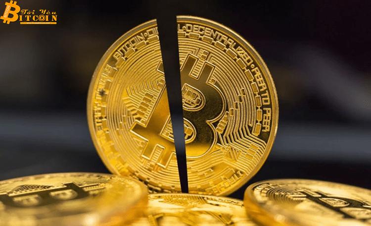 3 lý do cho thấy Bitcoin halving lần này rất khác biệt, khối lượng giao dịch 50 tỷ USD và..?