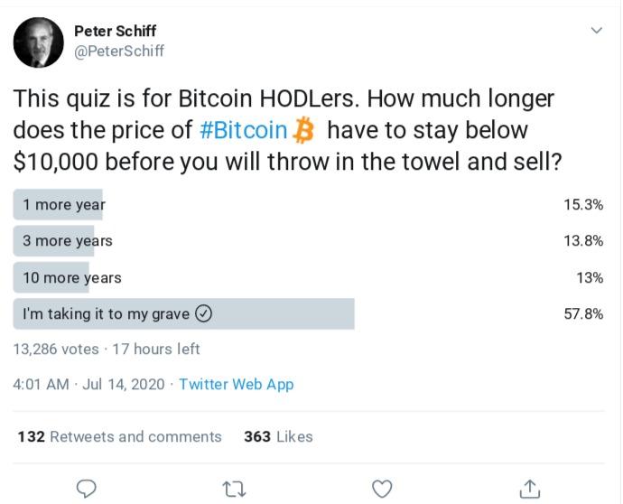 Cuộc khảo sát mới của Peter Schiff. Nguồn: Twitter