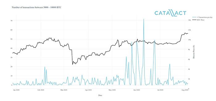 Số lượng giao dịch từ 5.000 đến 10.000 BTC đã tăng đáng kể trong suốt mùa hè củng cố giá của Bitcoin. Nguồn: Catallact