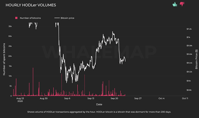 Khối lượng HODLer của cá voi Bitcoin. Nguồn: Whalemap