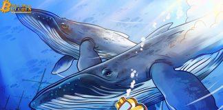 Các 'cụm cá voi' cho thấy 3 mức quan trọng để Bitcoin tiếp tục đà tăng giá