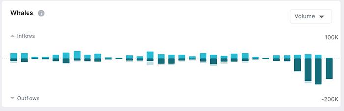 Hoạt động của các ví chưa trên 1.000 BTC. Nguồn: Flipside Crypto