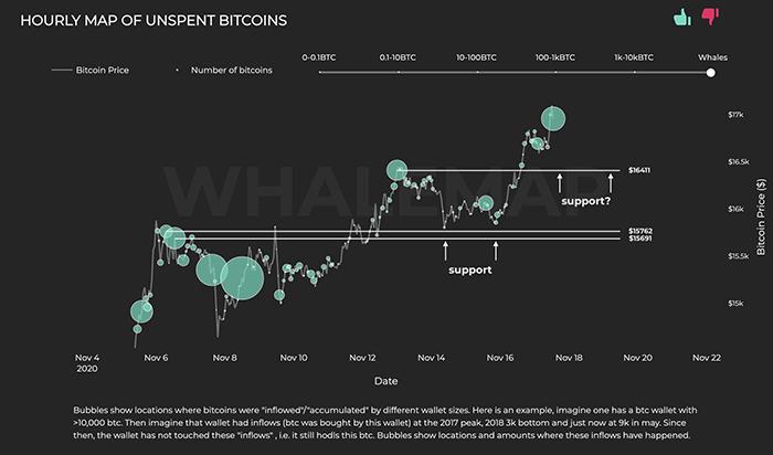 Các cụm cá voi Bitcoin. Nguồn: Whalemap