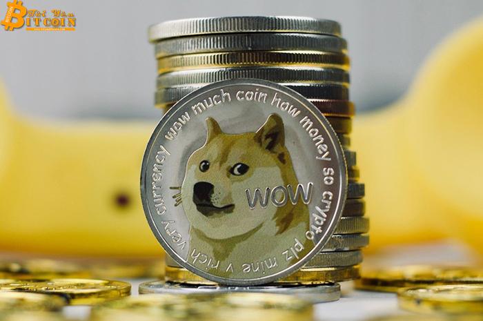 Mất 5 triệu Dogecoin vì sàn giao dịch sập