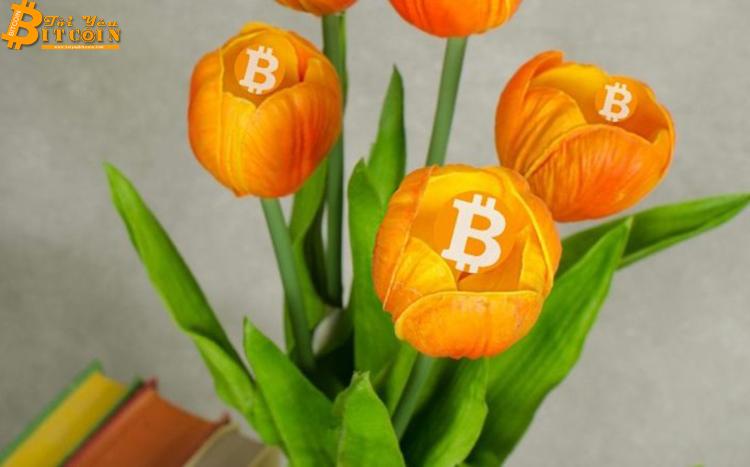'Bitcoin ngày nay giống hoa tulip 300 năm trước'