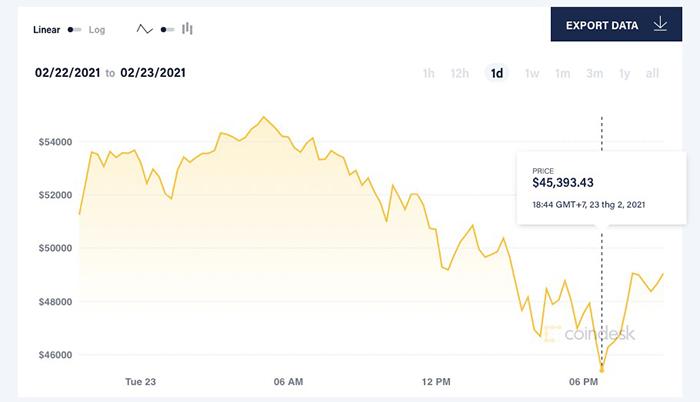 Bitcoin có thời điểm giảm xuống ngưỡng 45.000 USD/đồng hôm 23/2. Ảnh: Coindesk.