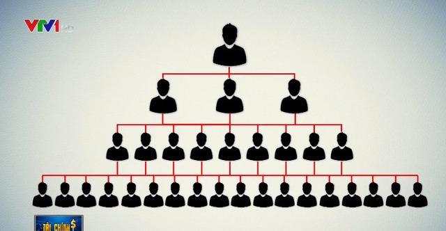 Người tham gia có thể phát triển mạng lưới, đội nhóm bằng cách kêu gọi, vận động người khác tham gia vào Lion Group tương tự hình thức đa cấp.