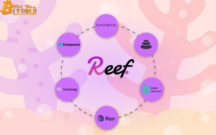 Alameda Research rót 20 triệu USD vào Reef Finance