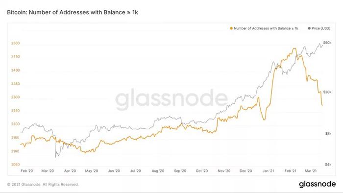 Danh sách người giàu Bitcoin của Glassnode