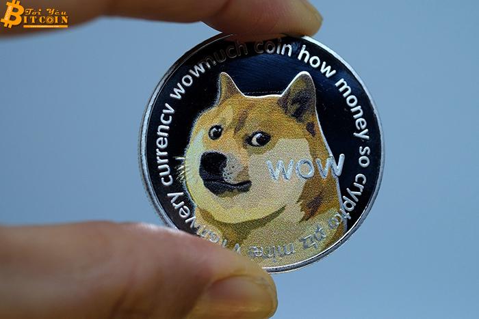 Nhà bán lẻ đồ điện tử Newegg chấp nhận thanh toán Dogecoin